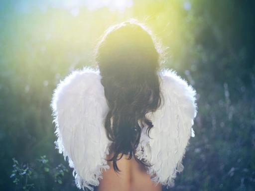 Angel wings in Sunbeams