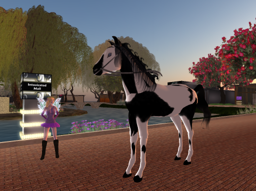 Talking Horse Mr Ed_001